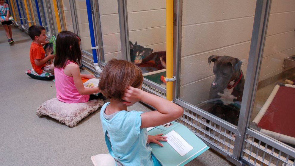 SHELTER DOGS FEEL LONELY AND UNLOVED, SO CHILDREN PRACTICE READING BOOKS TO THEM